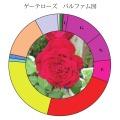 ゲーテパルファム図